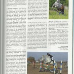 2013 Január- Ugrómunka II. rész